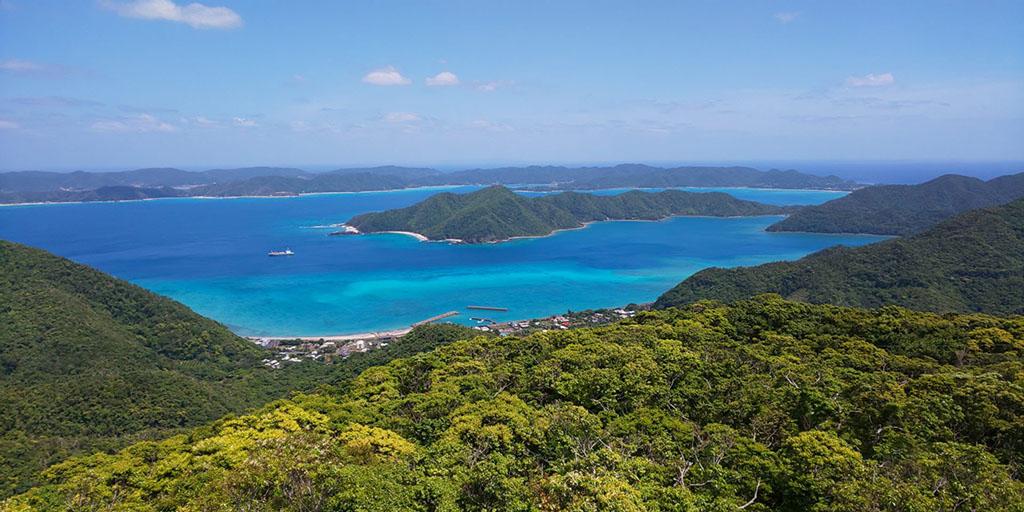 世界遺産登録の見通しとなる奄美大島