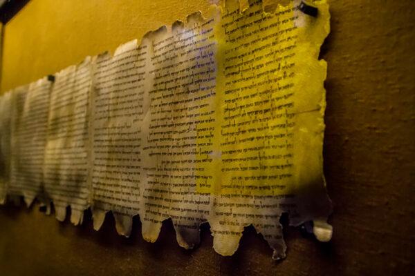 死海文書とは何か。日本語訳プロジェクトに携わる研究者が明かす、その全貌